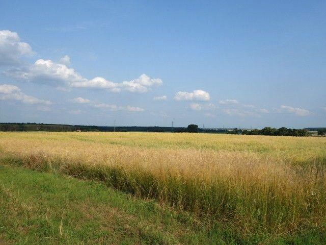 Pozemky podél silnice, pohled od Valtic