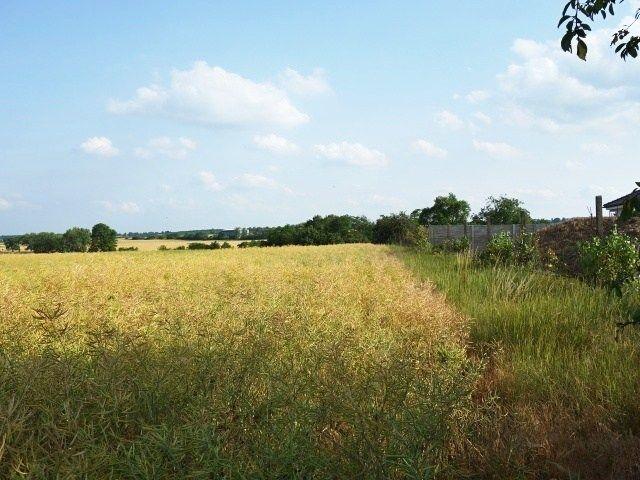 Zadní část pozemků od Valtic