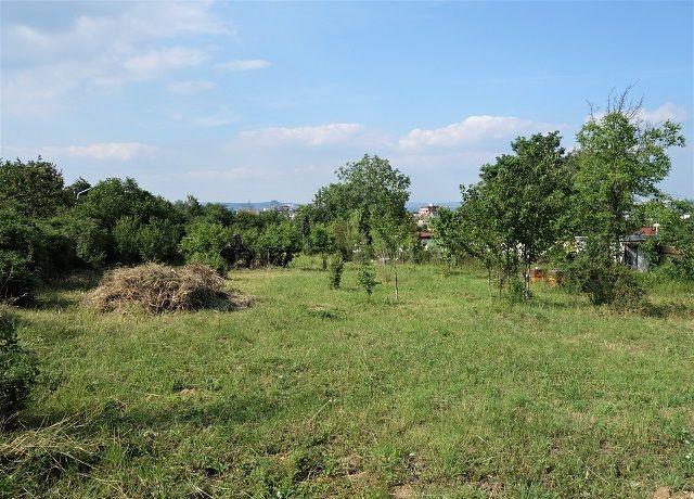 Prodej pozemku 1 817 m² Brno, Horní Heršpice