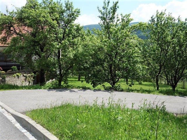 Pohled na pozemek od cesty