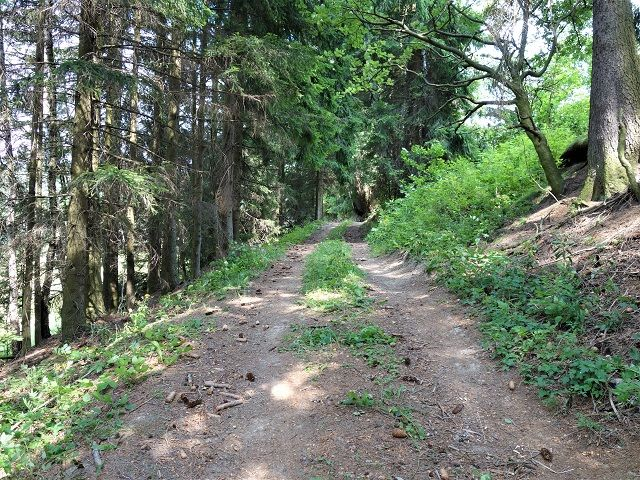 Cesta k pozemku