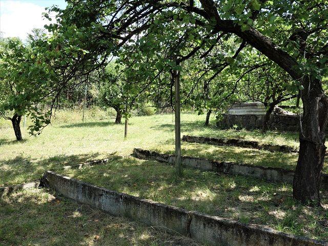 Pravá zadní část zahrady