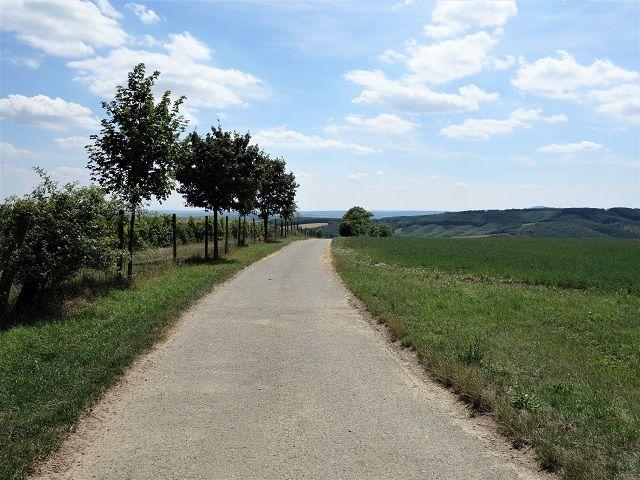 Cesta do Boleradic