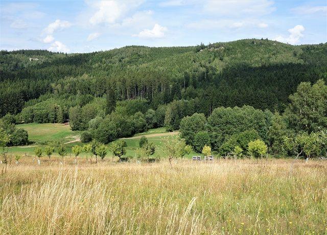 Prodej pozemku 9 475 m² Machov, Bělý, okres Náchod