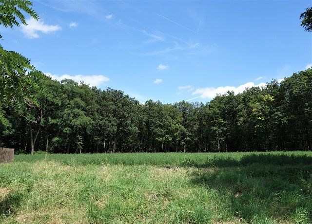Prodej lesa 10 335 m², Klobouky u Brna
