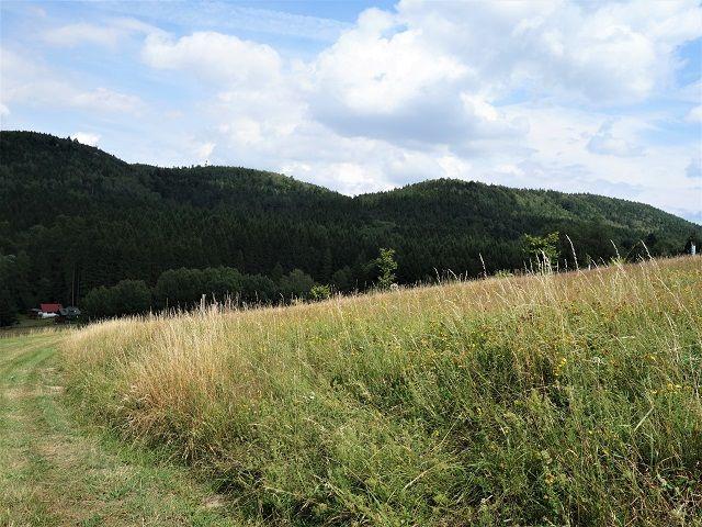 Pohled od cesty směrem k pozemku