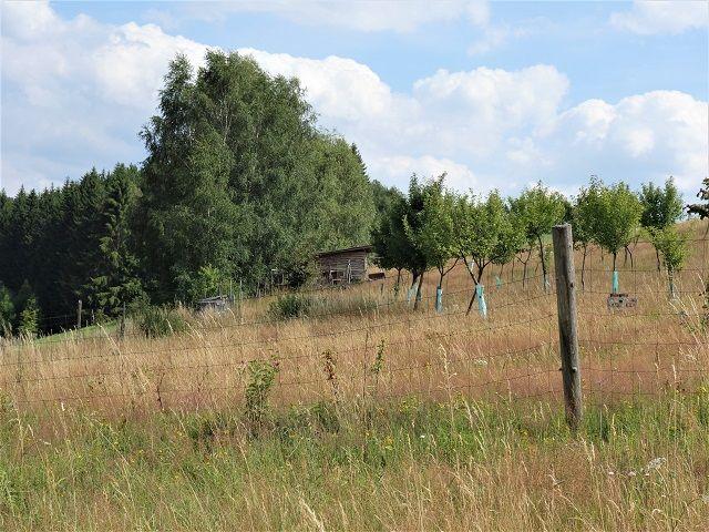 Pozemek, pohled od cesty vlevo