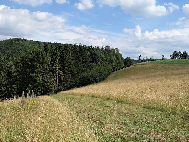 Hranice zadní části pozemku