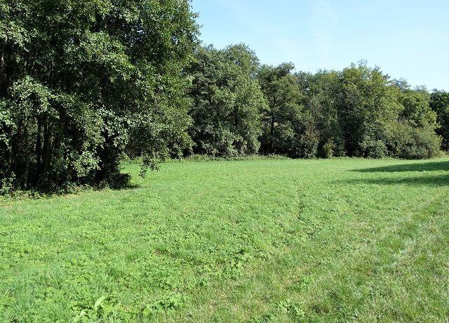 Pozemek 2 740 m² Vrbčany, okres Kolín