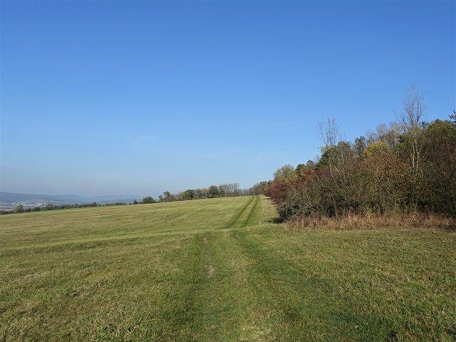Polní cesta nad pozemky