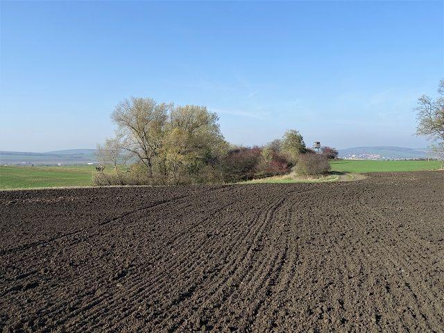 Okolní úrodná pole