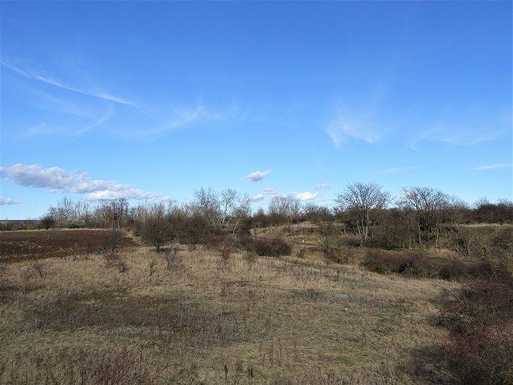 Pohled přes pozemky od západu
